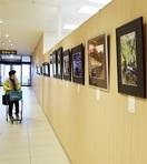 【作品展】「写遊ひの」の第28回写真展