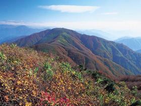 銀山があったことから名づけられた山