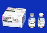 抗体カクテル療法 県内20病院が導入「解熱に効果」 運用面課題も