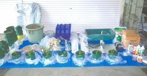 押収した鉢植えの大麻草(前列)や照明器具、肥料など=福井県警大野署(同署提供)