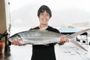 福井県美浜町日向の定置網にかかったサバヒー=13日、美浜町漁協