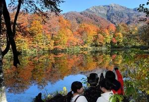 水面に鮮やかな紅葉が映り、見頃を迎えている刈込池=27日午前10時ごろ、福井県大野市上打波