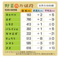 野菜のお値段 8月5日の週
