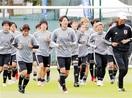 サッカー女子W杯 なでしこあすオランダ戦 強力…