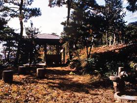 野鳥観察や散策が人気の自然豊かな公園