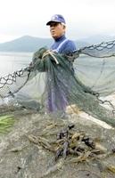 三方湖の川エビ漁。福井県若狭町には「湖の幸」があり、フードキャラバンで生かせそう=18日、同町鳥浜