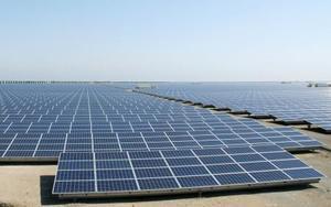 再生可能エネルギー事業者が設置した太陽光発電施設