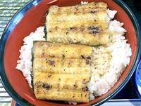 ウナギ 江戸時代から人気で高値 食べて納得!三方五湖メシ_夏編(1)
