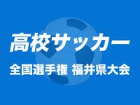 高校サッカー藤島11年ぶり4強