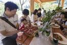 福井県産ジビエと大野産野菜堪能