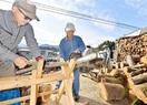 冬を暖かく「まき」次々 池田で加工作業