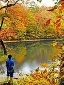 刈込池が紅葉、深みある赤や黄色