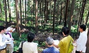 古代の山林寺院跡とみられる朝宮大社遺跡=9月、福井市朝宮町