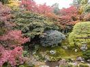 歴史感じる湖の都 寺社巡り、自然美も 大津市 …