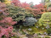 歴史感じる湖の都 寺社巡り、自然美も 大津市 旅すれば