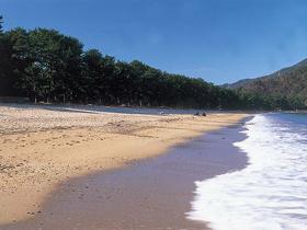 日本三大松原 白浜青松の海で泳ごう