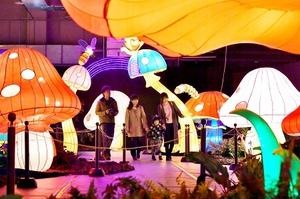 ファンタジックイルミネーションの屋内メイン会場。テーマは「光の国のアリス」=17日夜、福井県坂井市の芝政ワールド