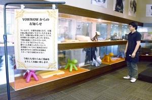 子犬や子猫の生体展示販売をやめるペットショップ「バウワウ運動公園店」=福井県福井市福新町