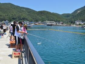 海釣りや磯遊びが楽しめる親水施設