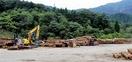 間伐材や残材をお金に、市場好調