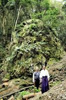 福井県高浜町で見つかった大岩。手前は赤坂康夫宮司(右)と氏子総代の冨田洋助さん=福井県高浜町宮崎