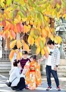 着物と紅葉おそろい(敦賀市) 彩色県美2019…