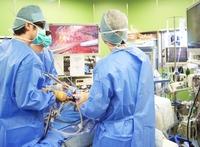 肝臓、膵臓の腹腔鏡手術に注目