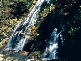 日本の滝100選 落差60mの水量豊かな姿は迫力満点