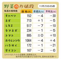 野菜のお値段 11月25日の週
