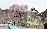 福島・白河の小峰城、石垣が復旧