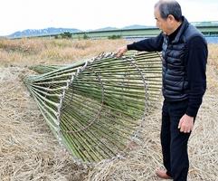 エバ漁の竹かごは高さ約3メートル、直径約1・5メートル。重機を使い、3人がかりで仕掛ける