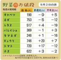 野菜のお値段 9月2日の週