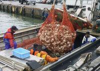 豊かな漁村、例外の優等生 赤字の国保、4月に大改革 2025年超寿社会・第4部「岐路の皆保険」(1)