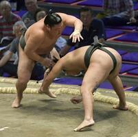 大相撲名古屋場所14日目、はたき込みで豊昇龍を破った玉木(左)=20日、ドルフィンズアリーナ