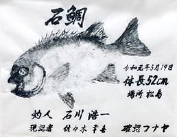 石川さんが釣ったイシダイの魚拓