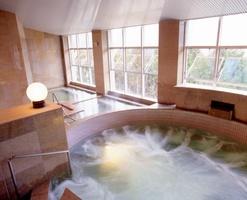 楽天トラベルの「男性の一人旅に人気のレジャー宿ランキング」で2位となった、福井県越前市の「しきぶ温泉 湯楽里」の浴場