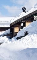 屋根の雪下ろしに汗を流す市民=1月11日、福井県勝山市内