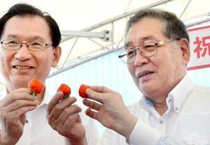 福島県大熊町産のイチゴの出荷を祝う渡辺利綱町長(右)ら=19日午後、大熊町