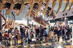 連日1万人超が訪れた勝山市の福井県立恐竜博物館=5月1日