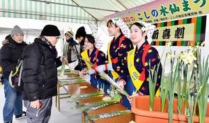 水仙まつりが開幕し、来場者に笑顔で水仙を配布する水仙娘=12月15日、福井県福井市居倉町の越前水仙の里公園