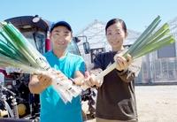 福井県産の白ネギ出荷、障害者の力で生産量UP 坂井市の「三つ星」が自動選別機を導入へ