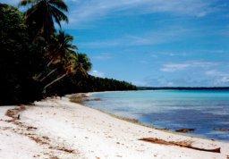 無人島に住んだ場合を考えると・・・