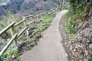 路面が削られた遊歩道。人が1人通るのがやっとだ=2月3日、福井県越前町梨子ケ平
