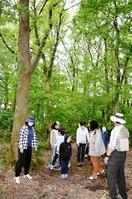 六呂師高原の雑木林を「探検」