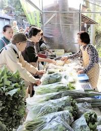 旬の野菜や山菜「大門市」始まる 勝山・平泉寺