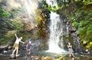 天然のクーラー、福井の一乗滝活況