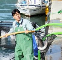 福井県産トラウトサーモンが数匹入った網を重そうに上げる福井県職員
