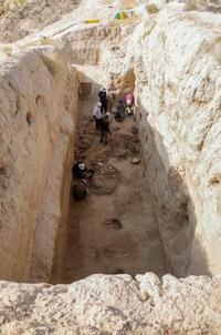 「絹の道」ソグド王の食料庫跡か