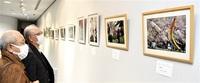 鯖江の魅力写した入賞作25点を展示 フォトコンテスト