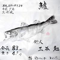 三谷さんのスズキ魚拓